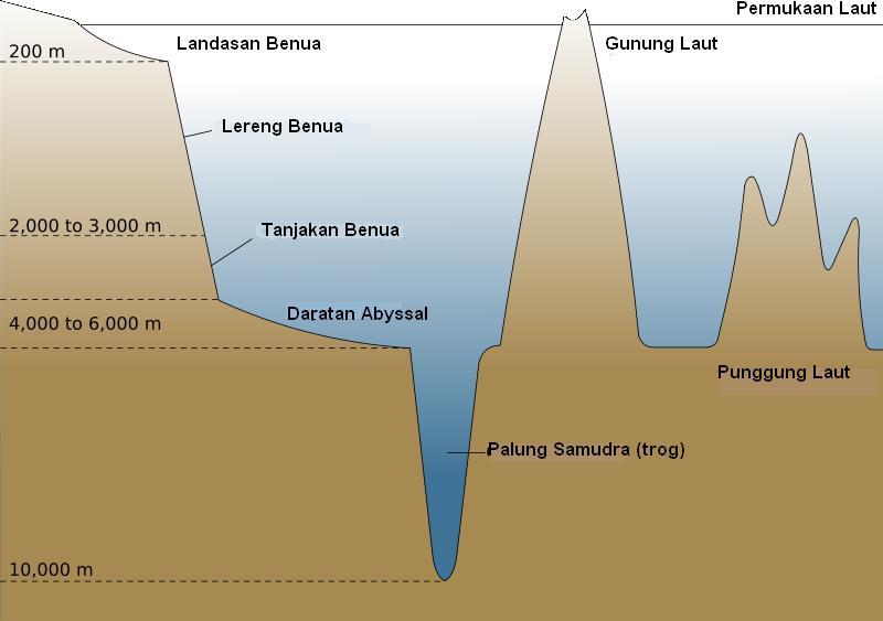bentuk bentuk muka bumi dasar laut