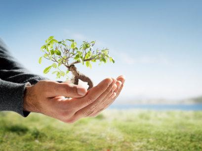 Kebijakan pengelolaan lingkungan hidup