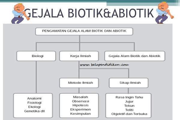 pengamatan gejala alam biotik dan abiotik
