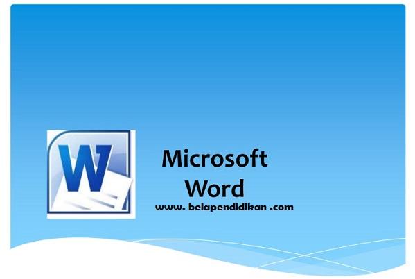 program ms word 2010