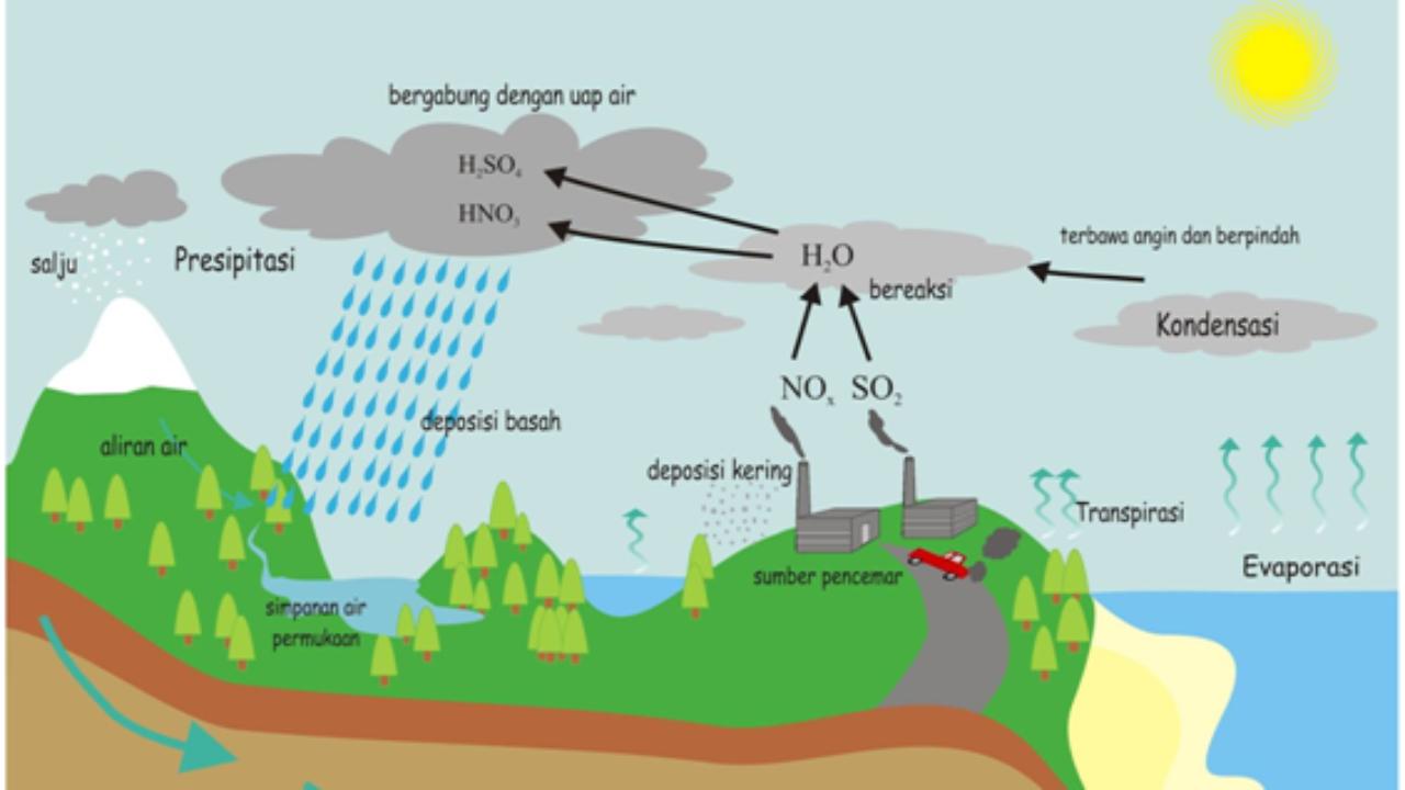 Proses Terjadinya Hujan Siklus Air Keluhkesah Com