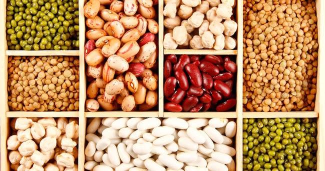 kacang kacangan kaya akan protein nabati