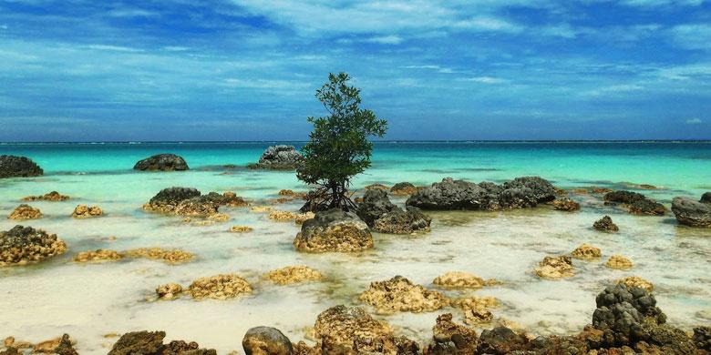 Kepulauan Nias