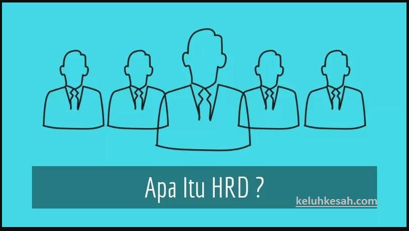 pengertian hrd serta fungsi tugas dan tipsnya