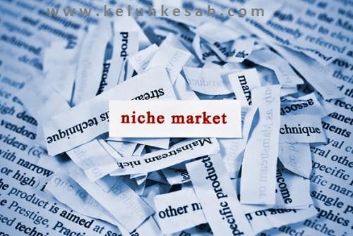 Pilih nama blog dan niche
